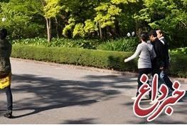 پیشنهاد پزشکان برای جلسه پیادهروی کاری به جای پشت میزنشینی/راهکار جدید سلامتی